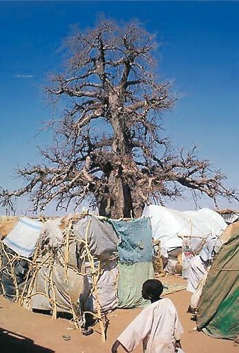 Khartum-karuselli pyörittää YK:ta