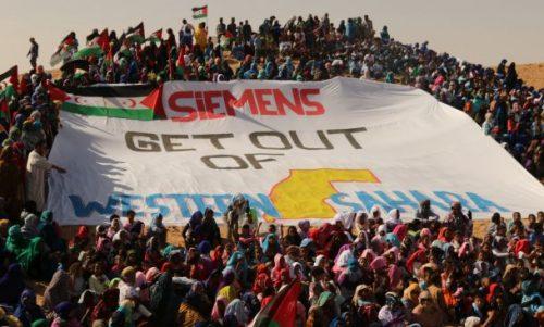 Mistä nyt tuulee: Sahrawipakolaiset vastustavat Siemensin energiahanketta