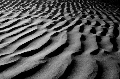 Länsi-Sahara: Rikas ja ryöstetty maa