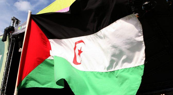 Hyväksyykö EU-parlamentti laittoman EU:n ja Marokon välisen sopimuksen – suomalaismepeistä Halla-aho ja Virkkunen estämässä avoimen debatin aiheesta